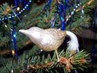 Vögelchen in unserem Weihnachtsbaum