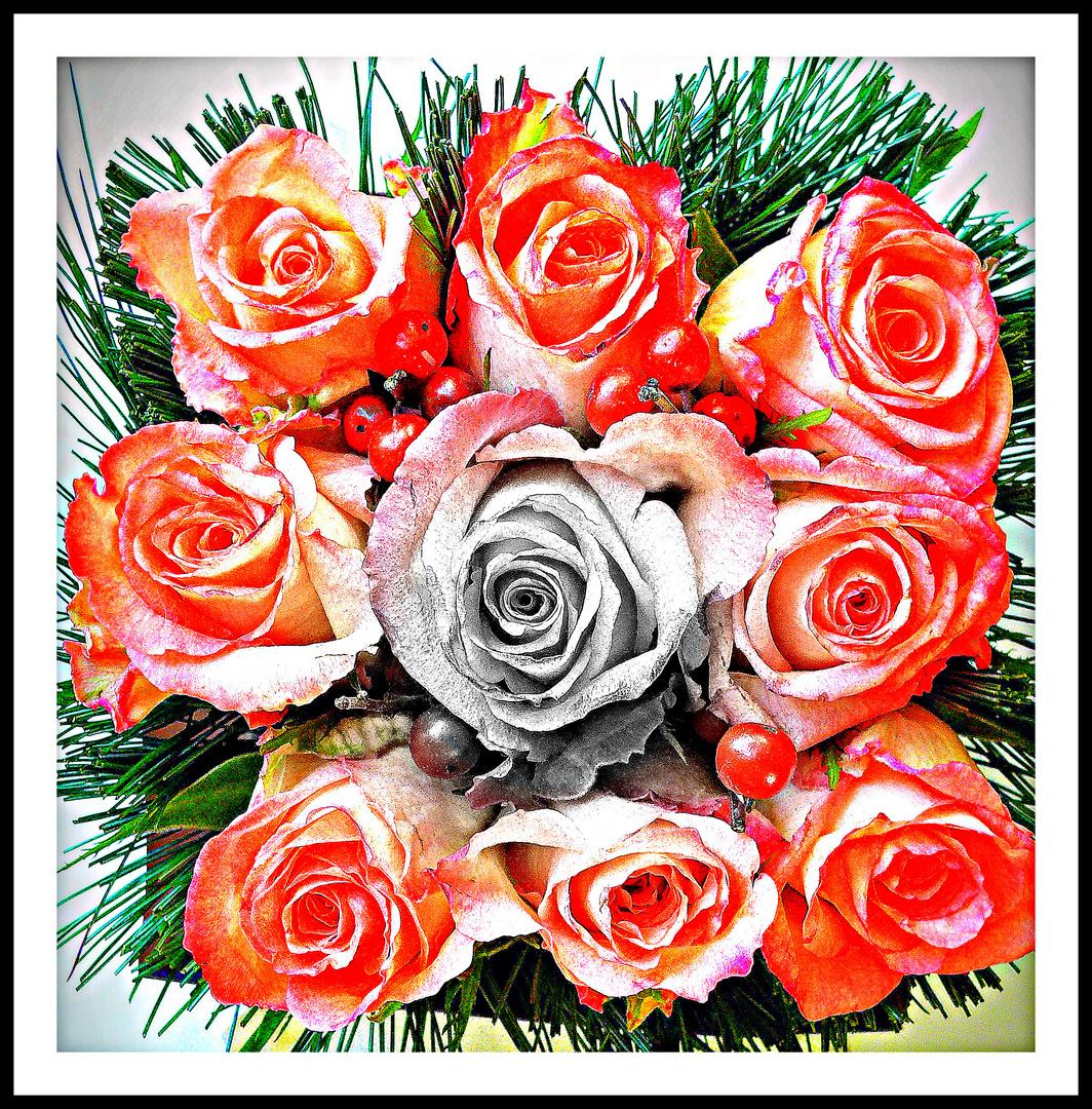 """"""" Voeux florale """""""