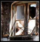 Vogel im Fenster auf Kreta