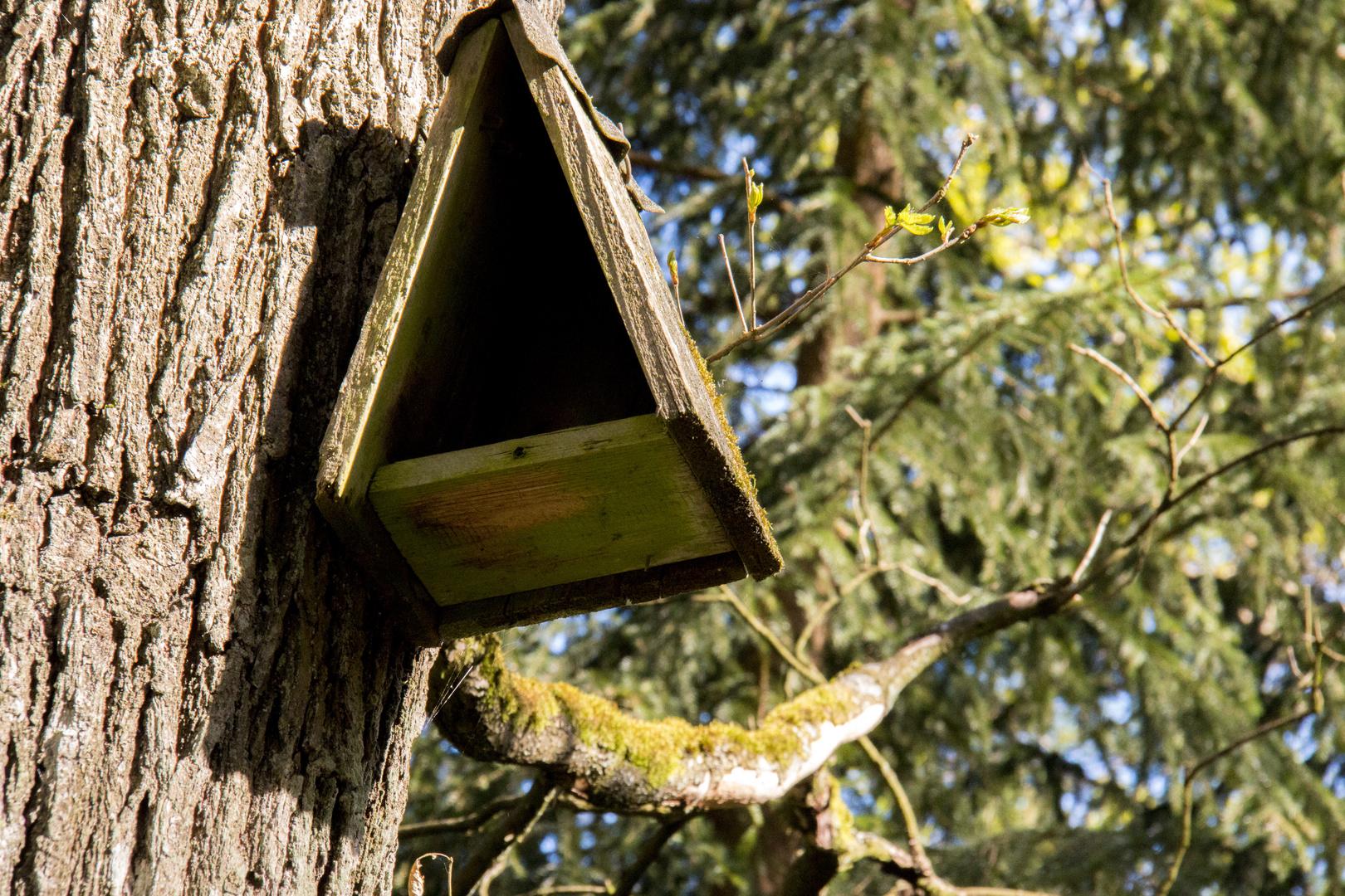Vogelhaus im Bayerischen Wald