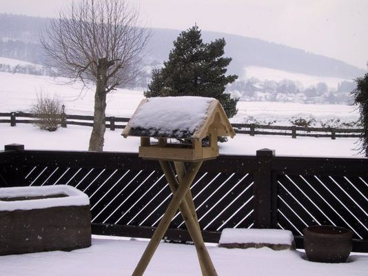 Vogelhaus im Winter