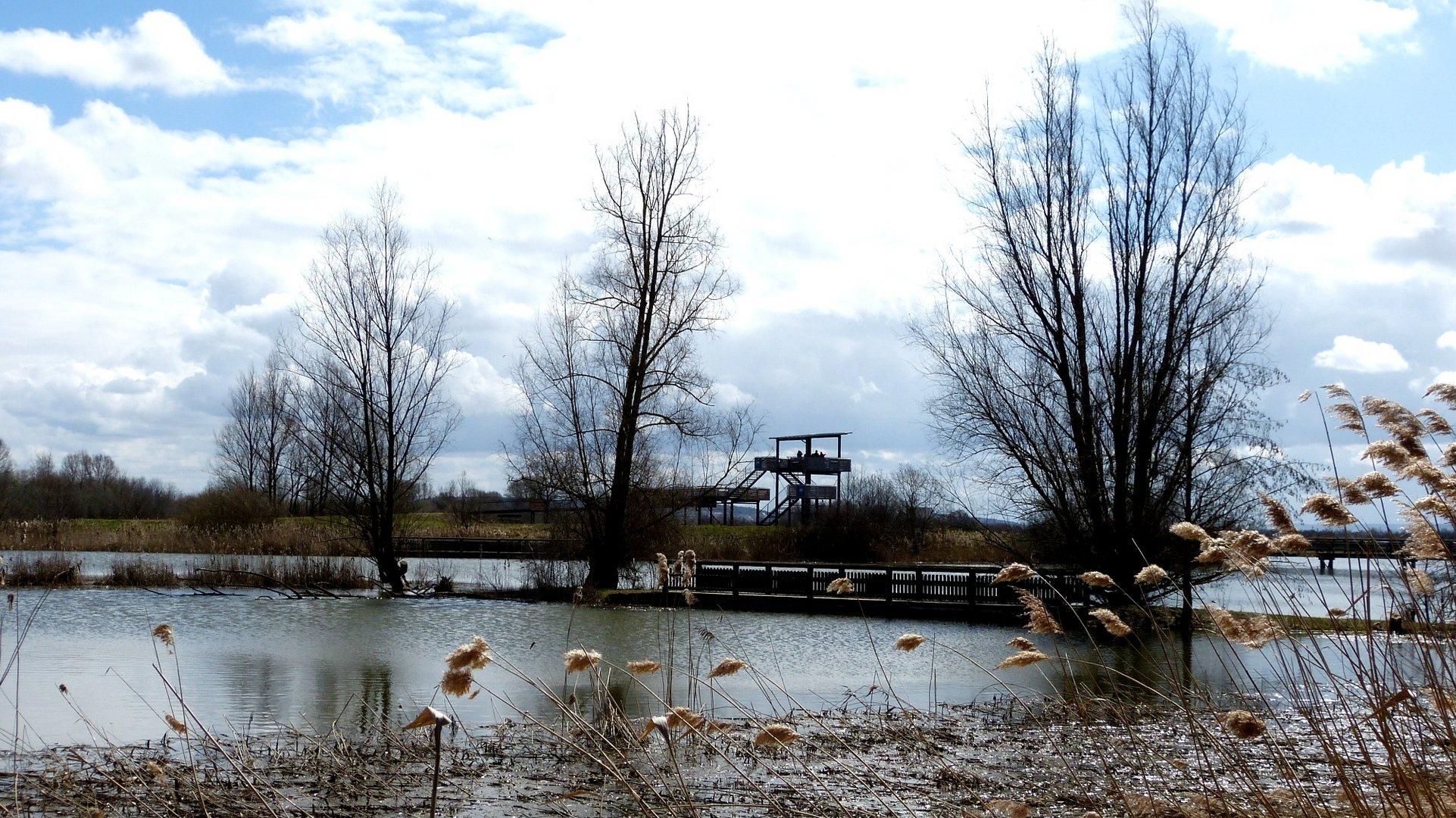 Vogelinsel 10