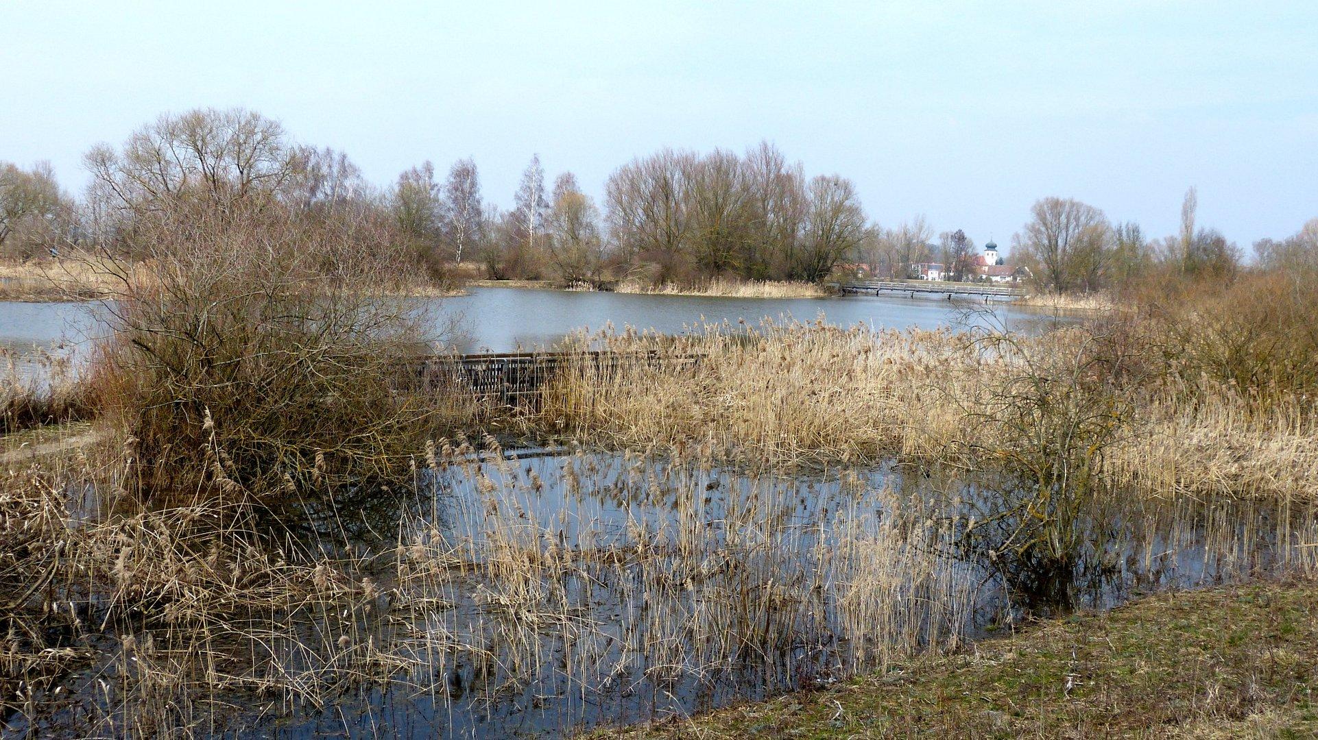 Vogelinsel 2