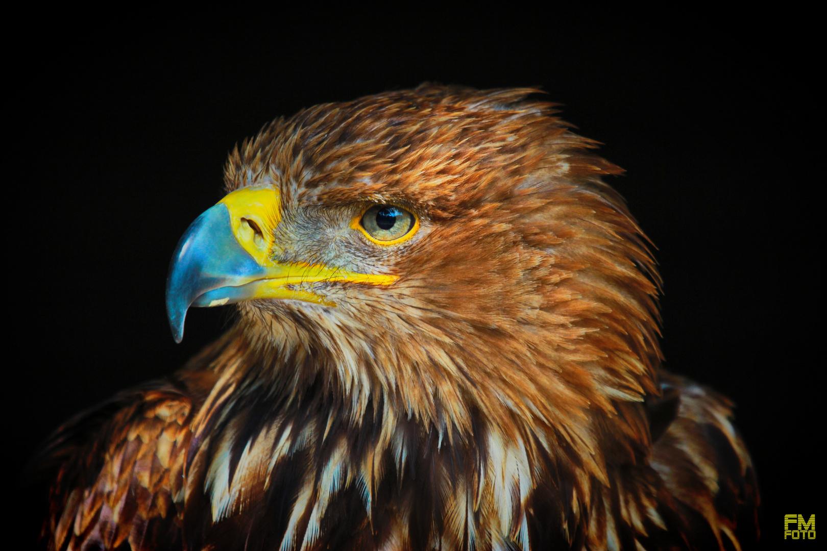 Vogelpark Hellental
