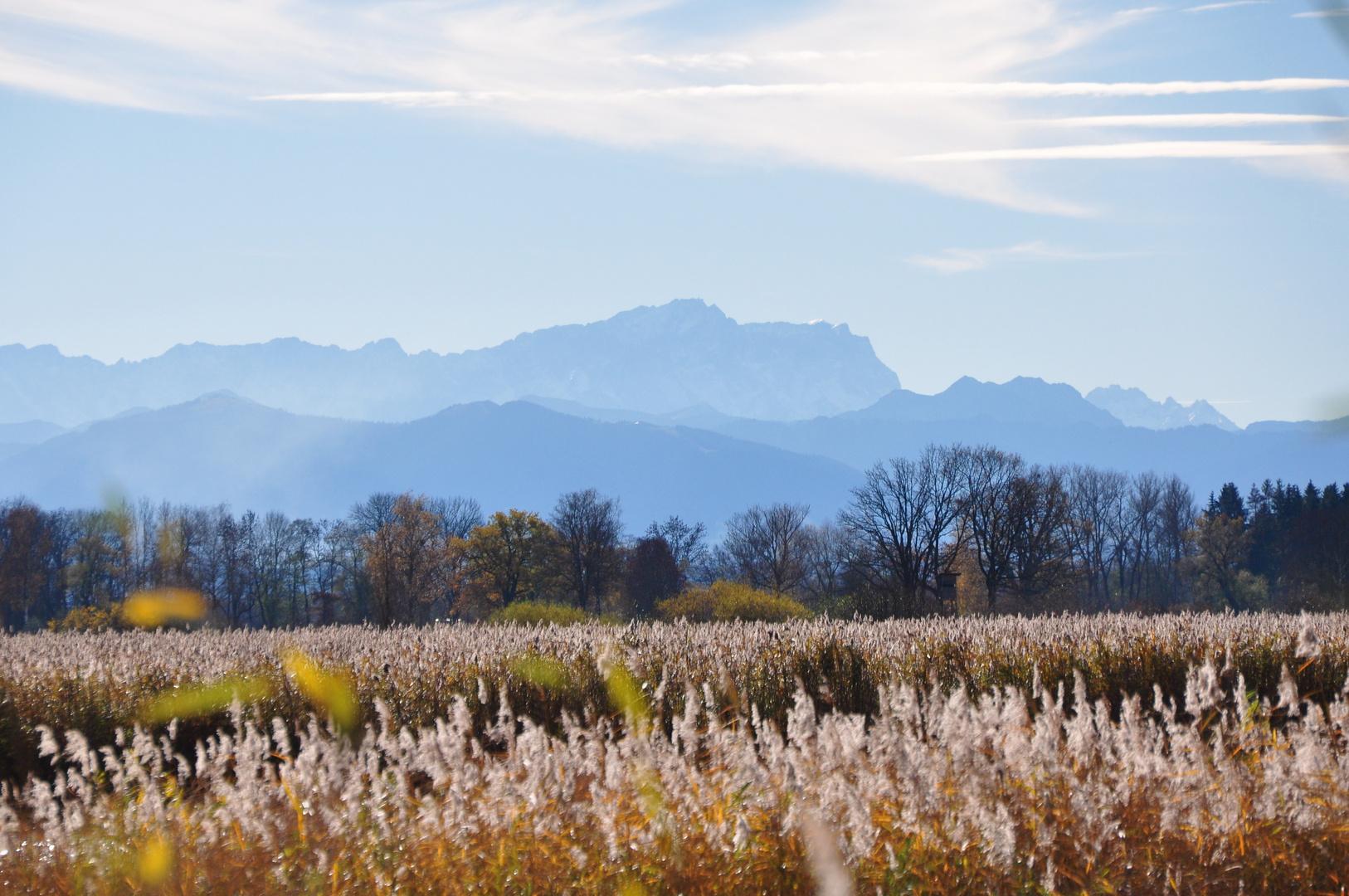 Vogelschutzgebiet Ammersee Süd mit Zugspitzmassiv