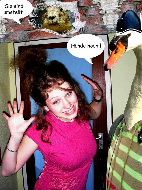 Vogelzei