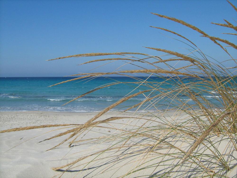 Voglia di mare foto immagini paesaggi mare natura for Disegni di paesaggi di mare