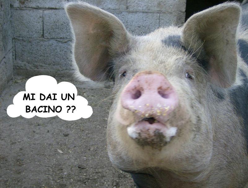 VOGLIA DI TENEREZZA !!!