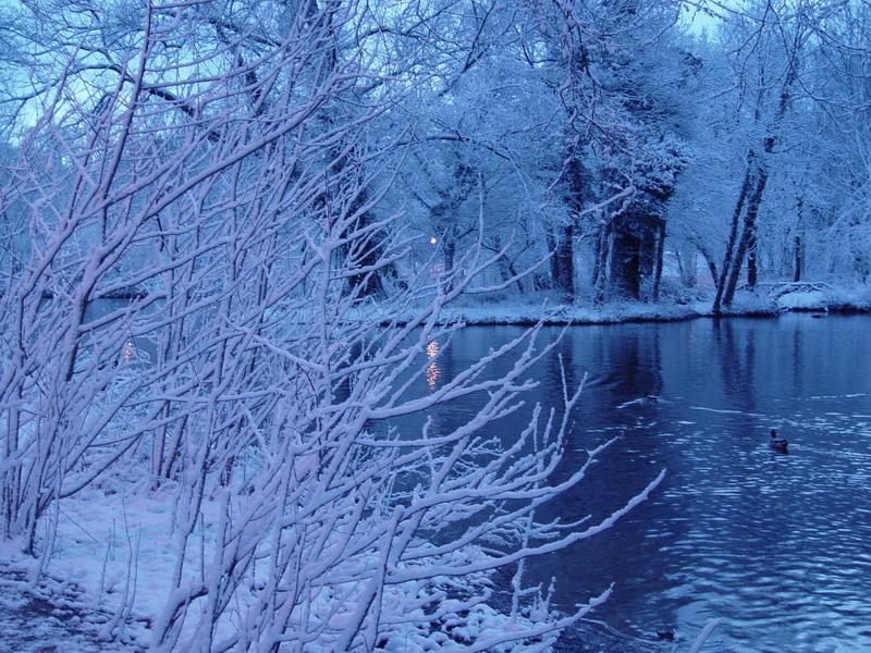 voila la petite île sous la neige