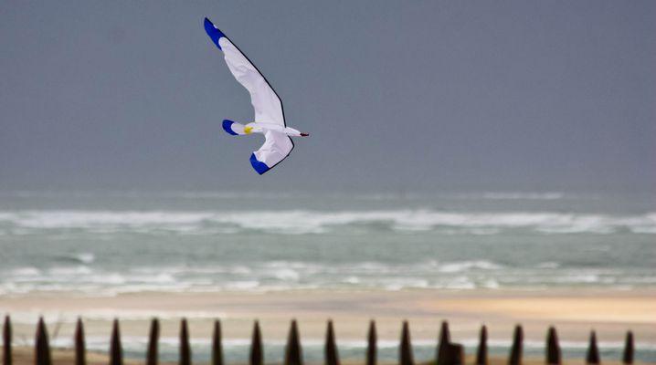 Vol au dessus du petit Nice
