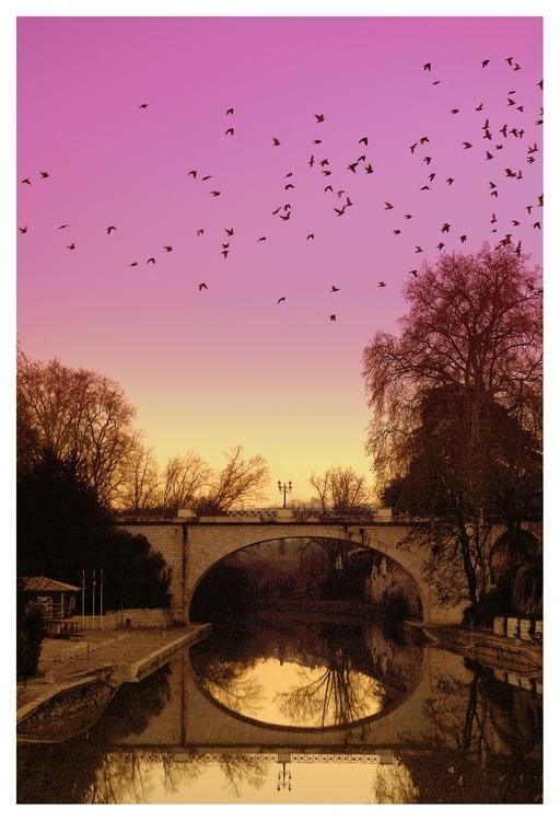 Vol au dessus du pont. by Marie47