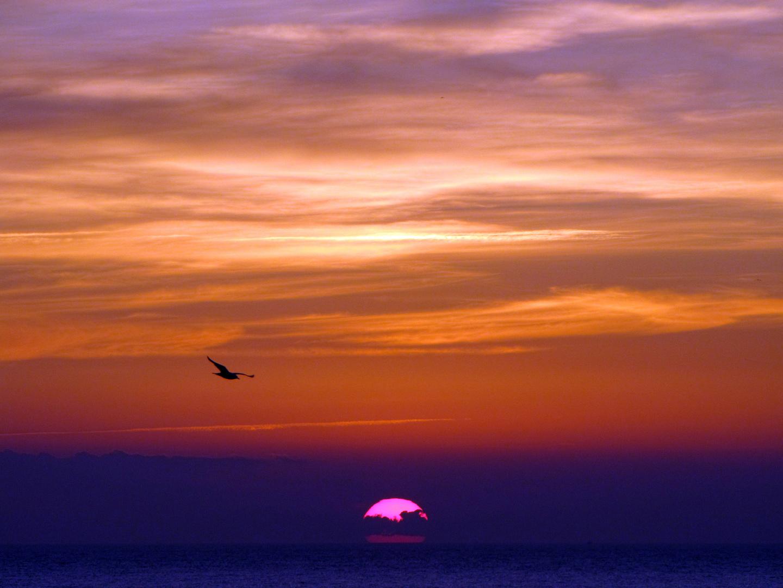 Volando oltre il cielo