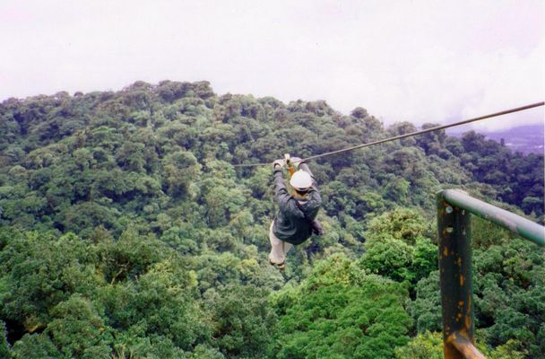 Volando sobre la selva