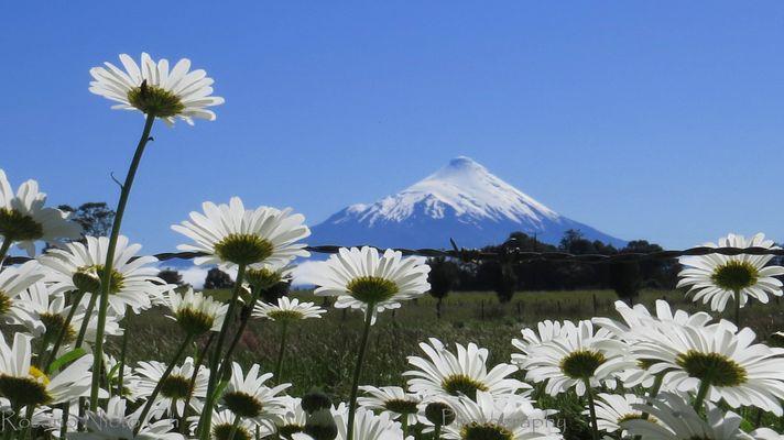 Volcan a traves de Manzanillones