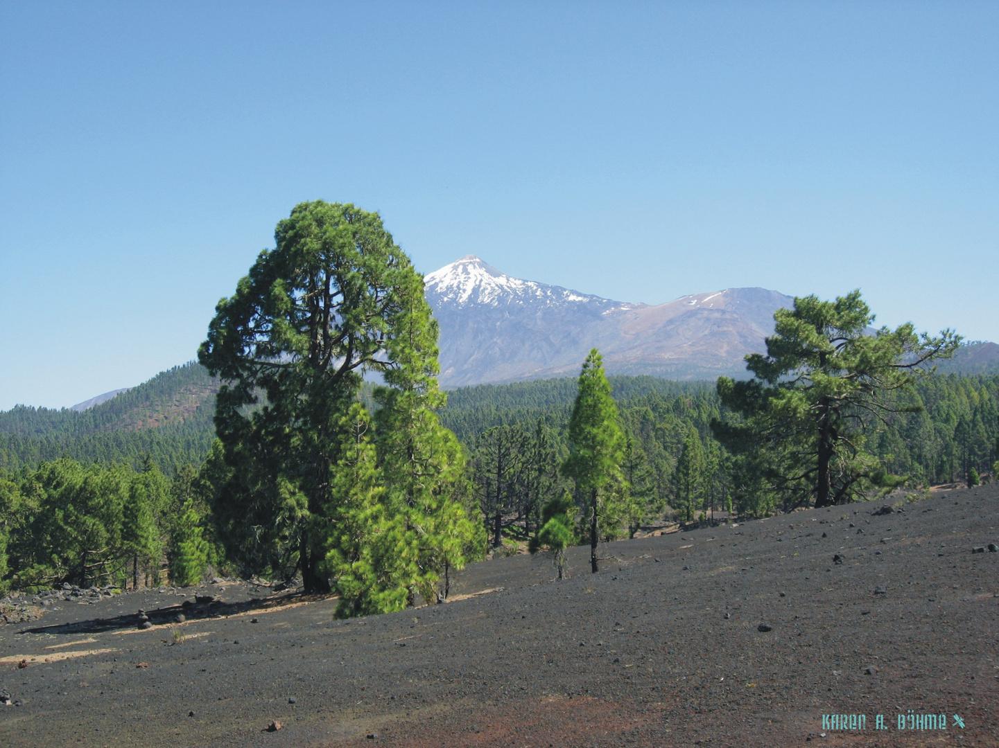 Volcan Garachico II (Tenerife)