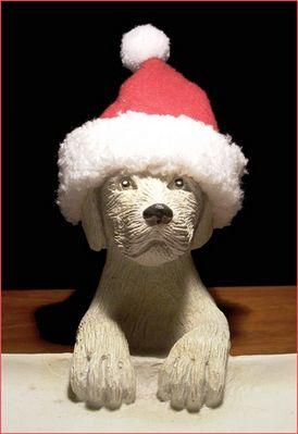 Voll in Weihnachtsstimmung?
