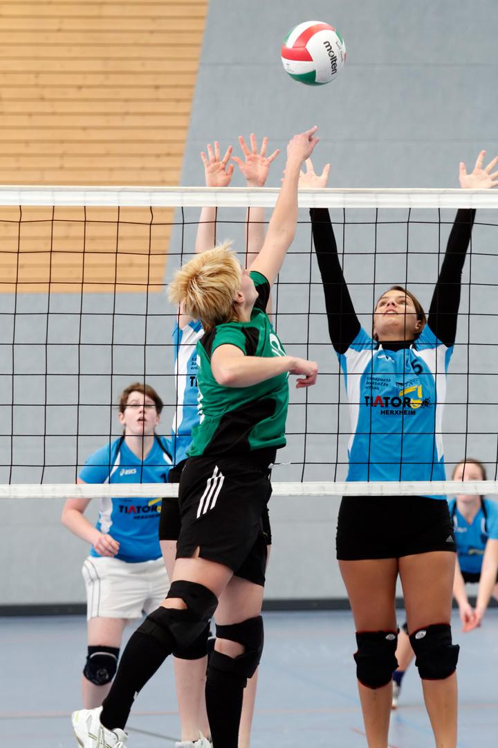 Volleyball Grünstadt-TV Herxheim 28.11.2010_2