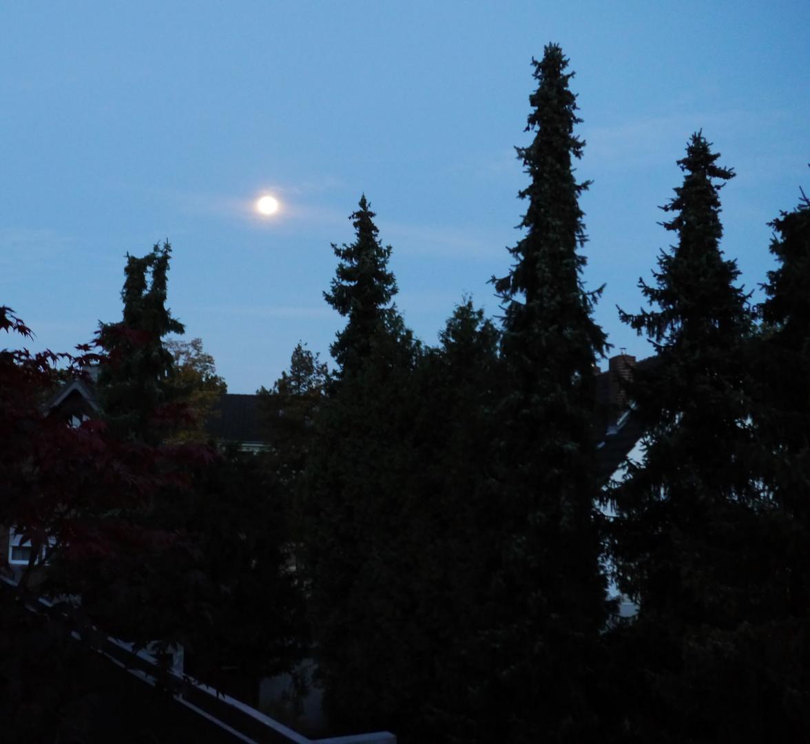 Vollmond am Morgen im Oktober 2012