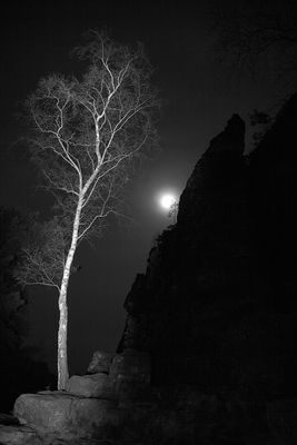 Vollmond an der Lichterhöhle