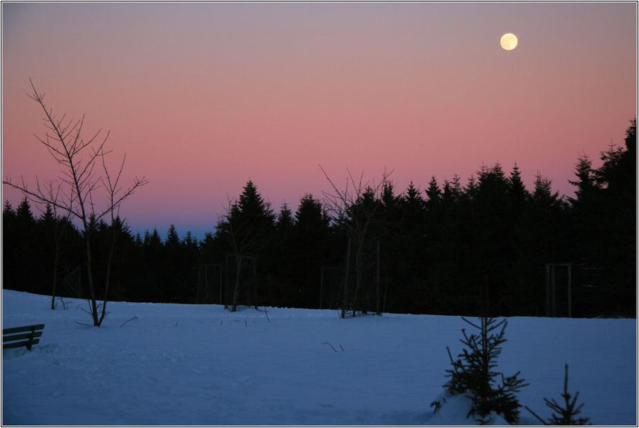 Vollmond im Thüringer Wald