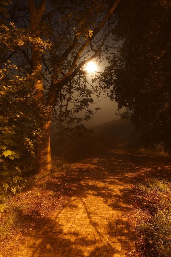 Vollmond und Nebel