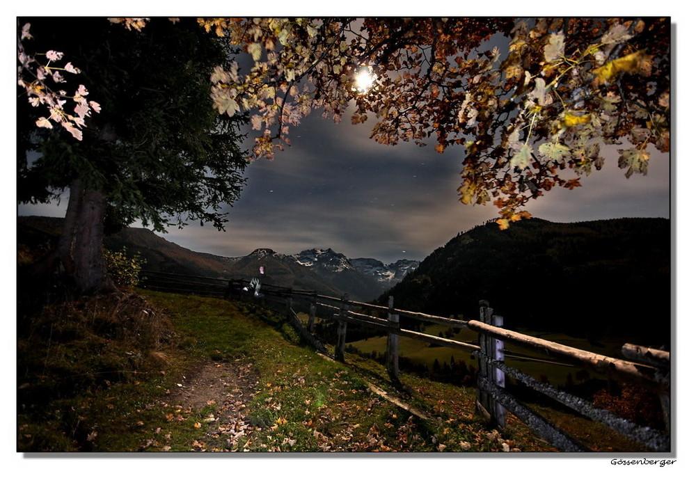 Vollmondnacht im Herbst #1