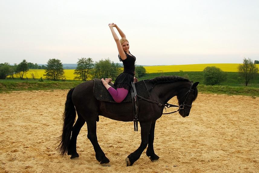 voltigieren oder die ausdruckskraft foto bild sport sport mit tieren pferdesport bilder. Black Bedroom Furniture Sets. Home Design Ideas
