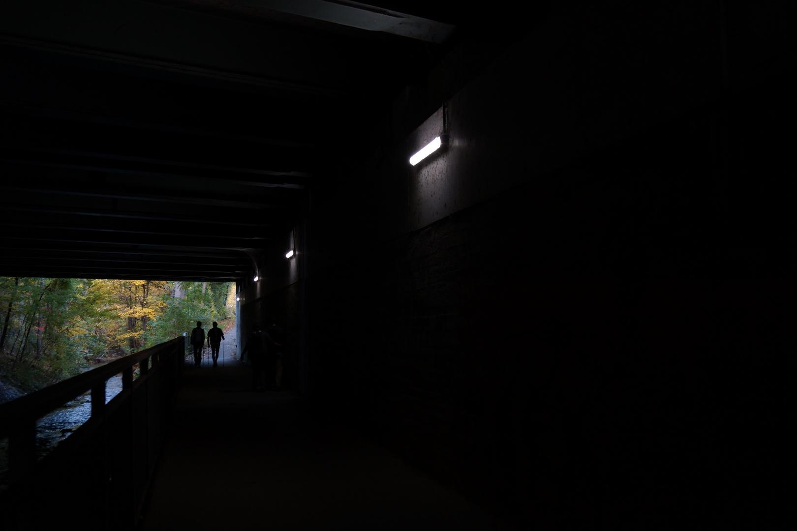 Vom Dunkel ins Licht...