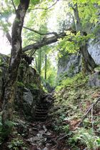 Vom Königssee zum Kärlingerhaus (Berchtesgaden)