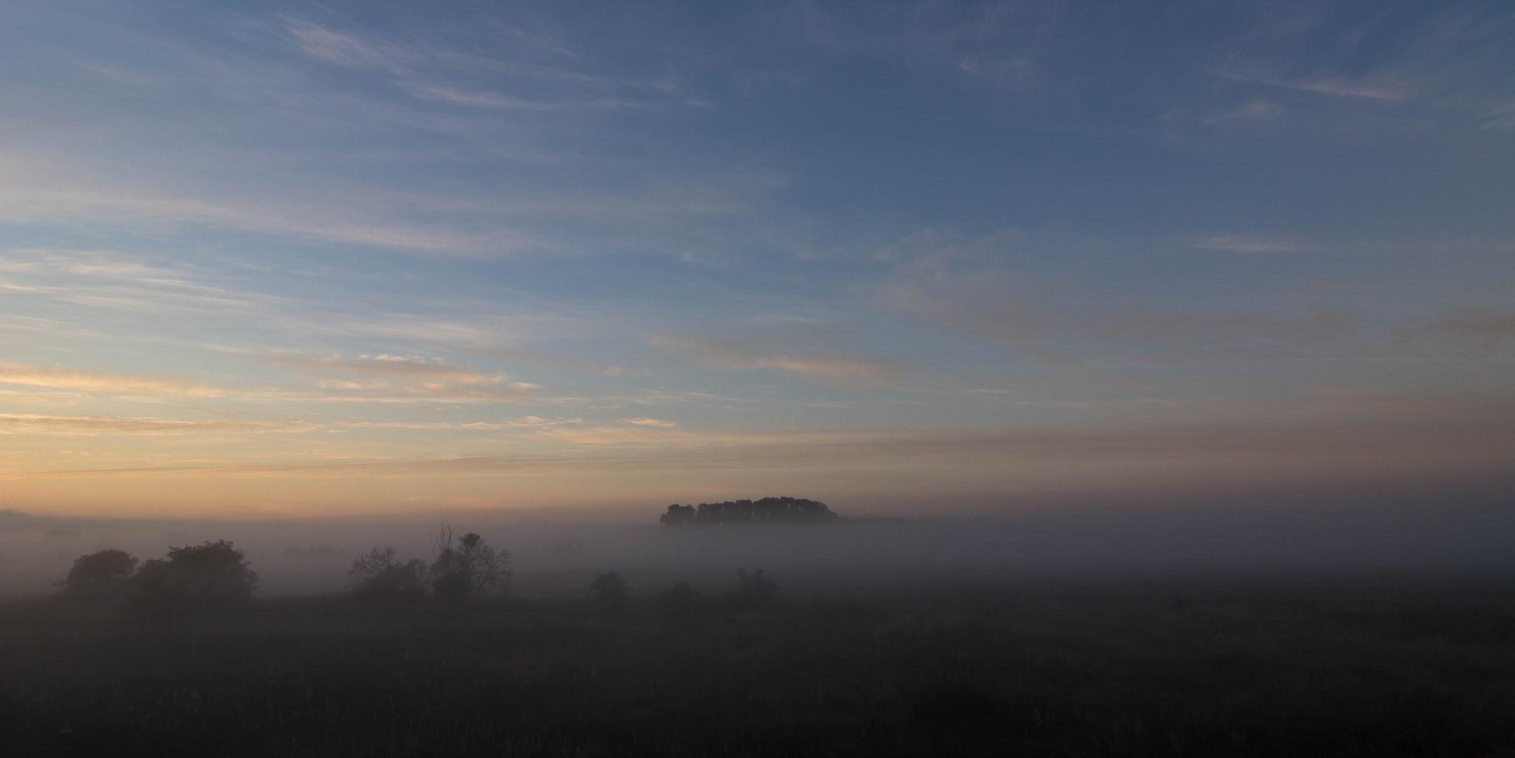 - Vom Nebel bedeckt -