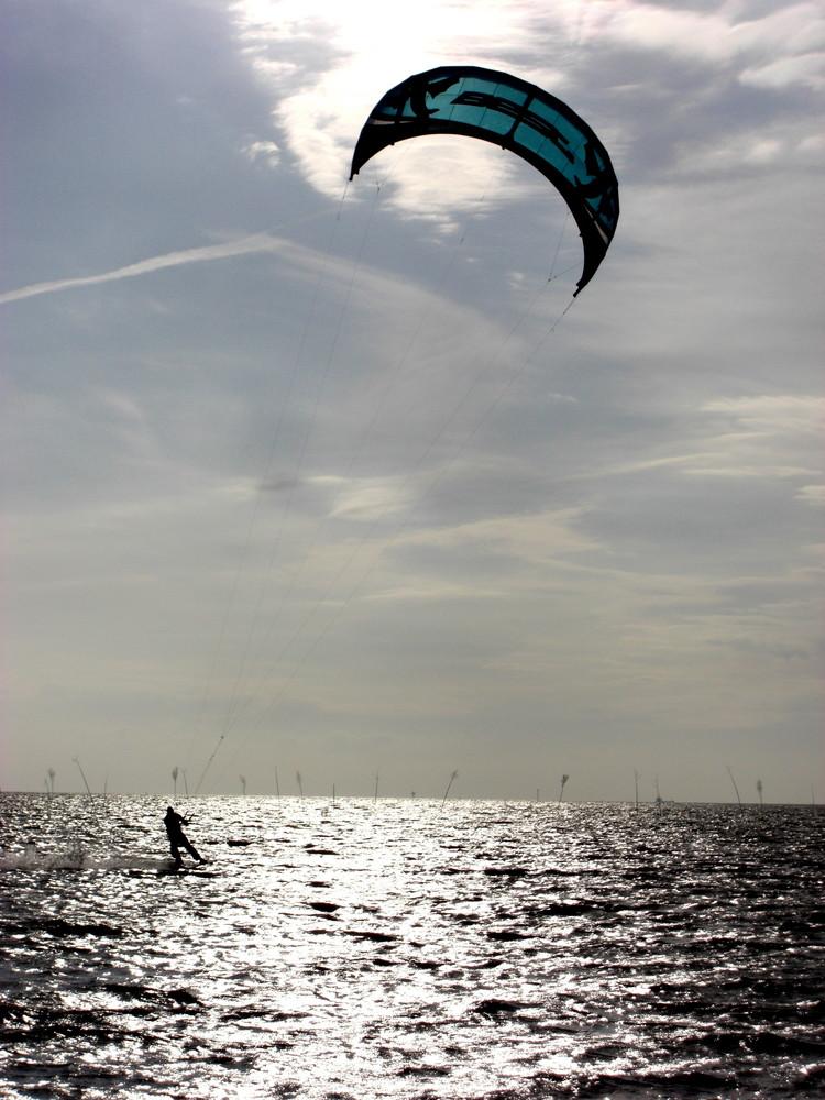 vom Wind getragen (2)