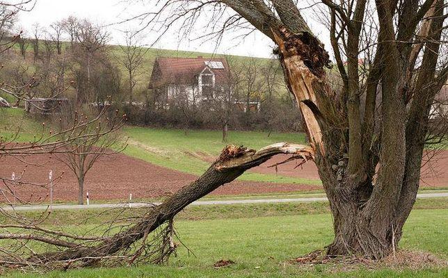 Von Blitz getroffen