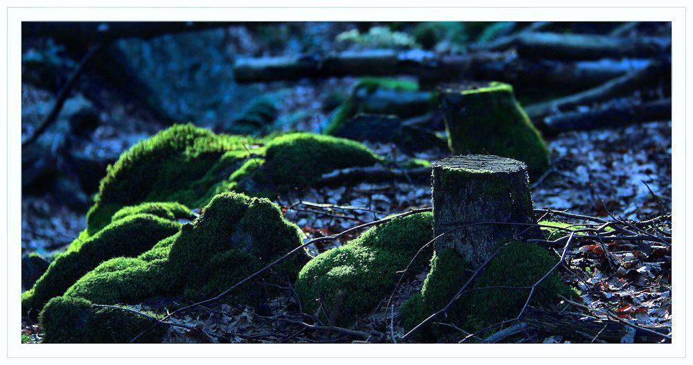 von den grünen steinen...