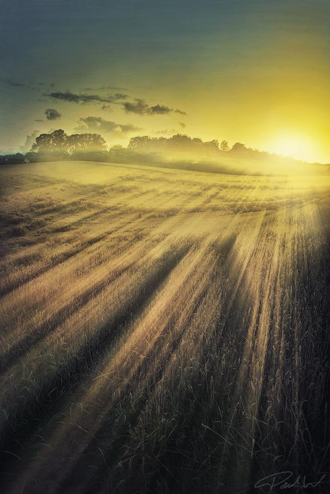 Von der Sonne berührt ...