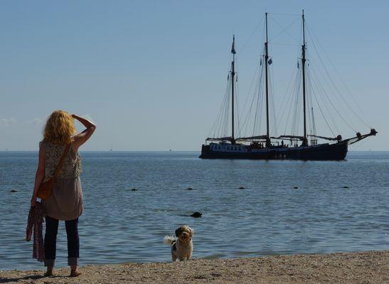 Von Frauen, Hunden und von fernen Schiffen ...