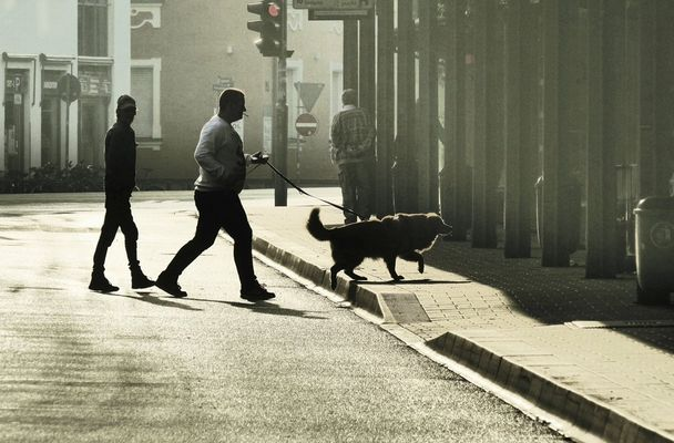 Von Hunden und ihren Menschen
