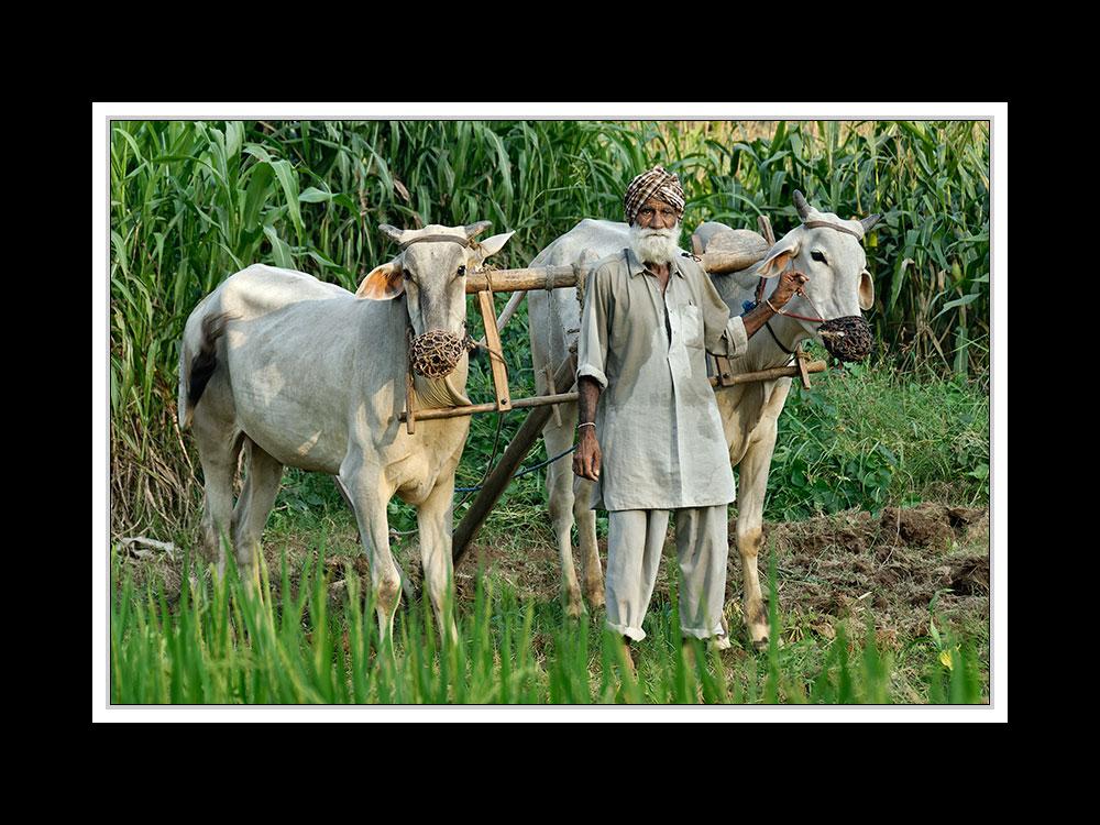 Von Manali nach Chandigarh 05