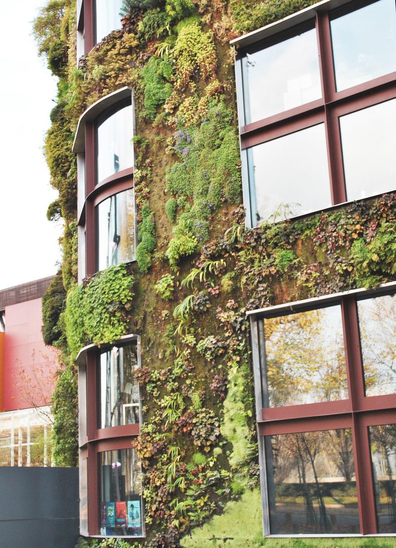 von Natur besessenes Haus in Paris