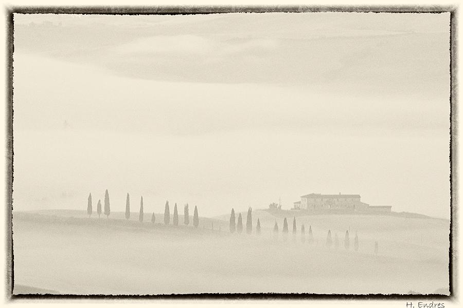 Von Nebel eingehüllt