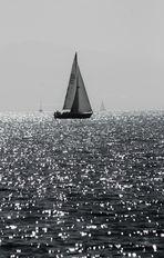 von Segelbooten auf dem Bodensee und dem Glitzern des Wasser s