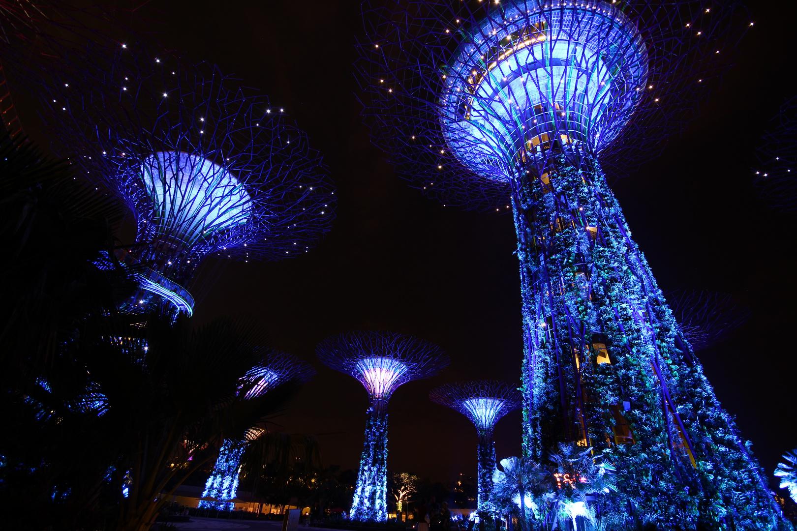 Von Singapore nach Pandora