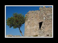Von Troja nach Izmir 009