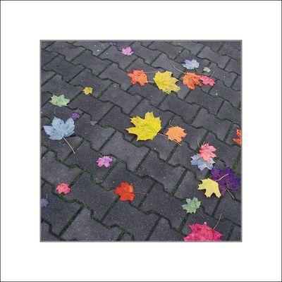 Von wegen Herbstblues ..................... !!!