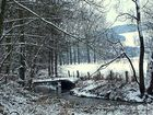 -Von wegen Winter ade-