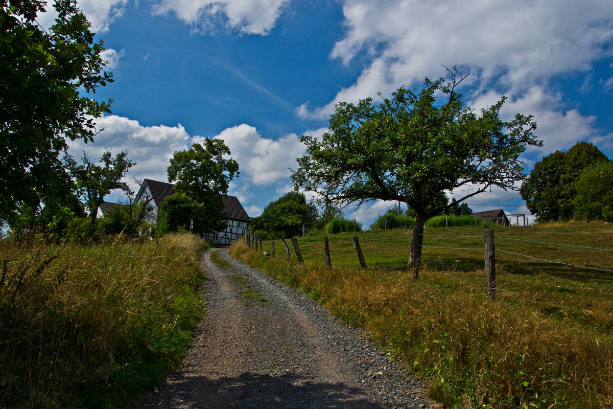 von Wipperfeld nach Hollinden VII