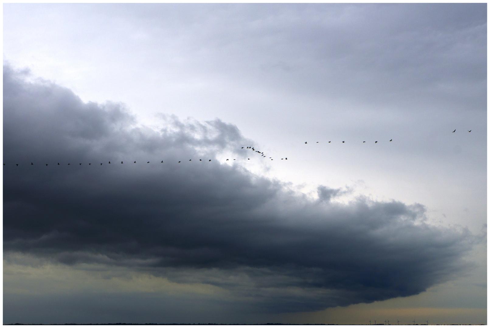 Von Wolken getragen