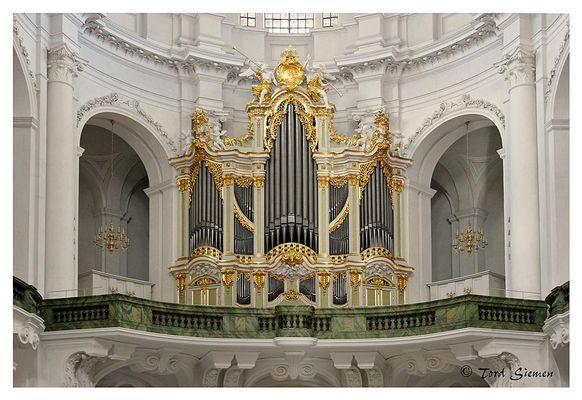 Vor dem Feuersturm gerettet - die Silbermann-Orgel  in der Hofkirche