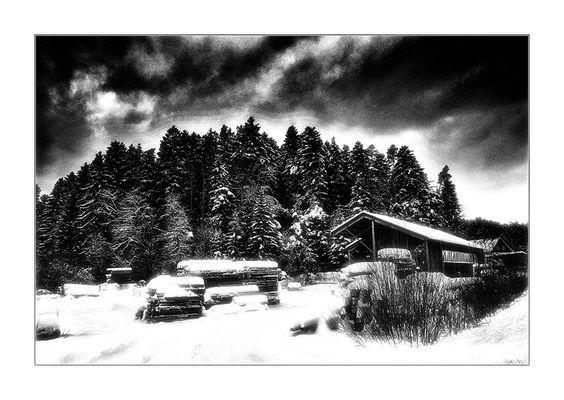 vor dem nächsten Schneesturm im Schwäbisch-Fränkischen Wald.... ;-(