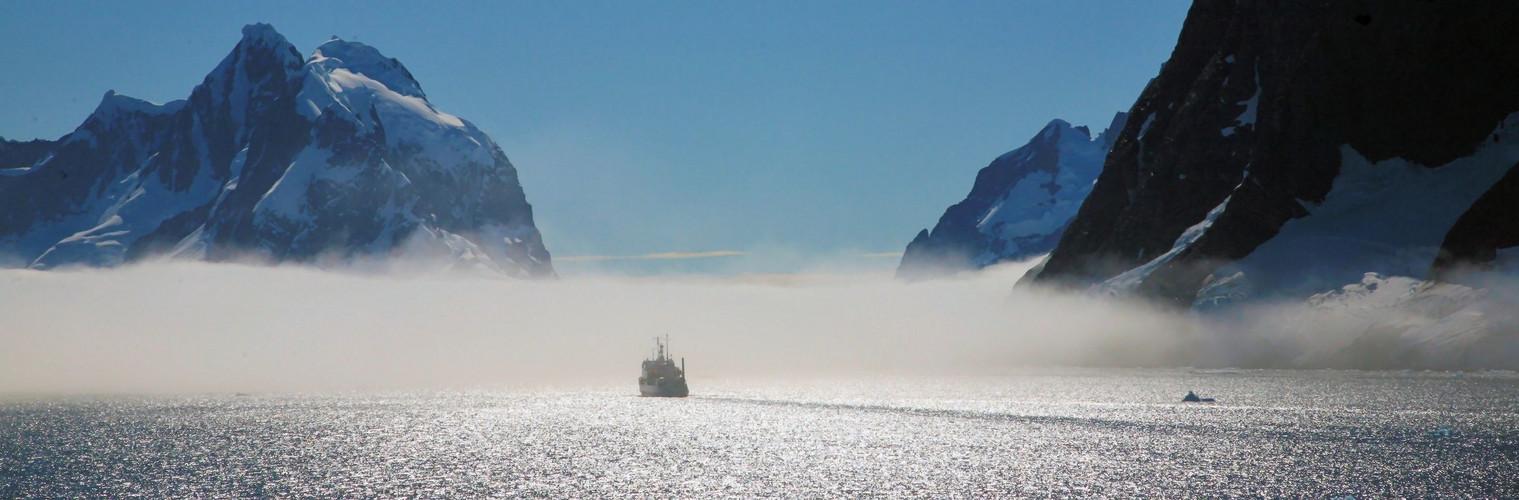 Vor der Nebelbank