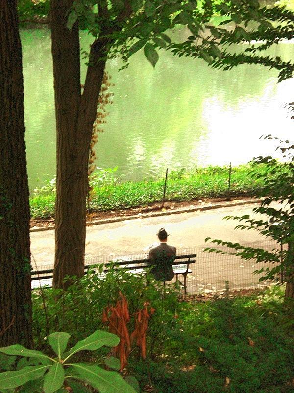 Vor gar nicht allzu langer Zeit...Central Park